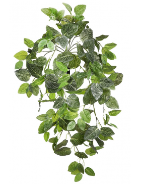 FITONIA COLGANTE ARTIFICIAL 90CM
