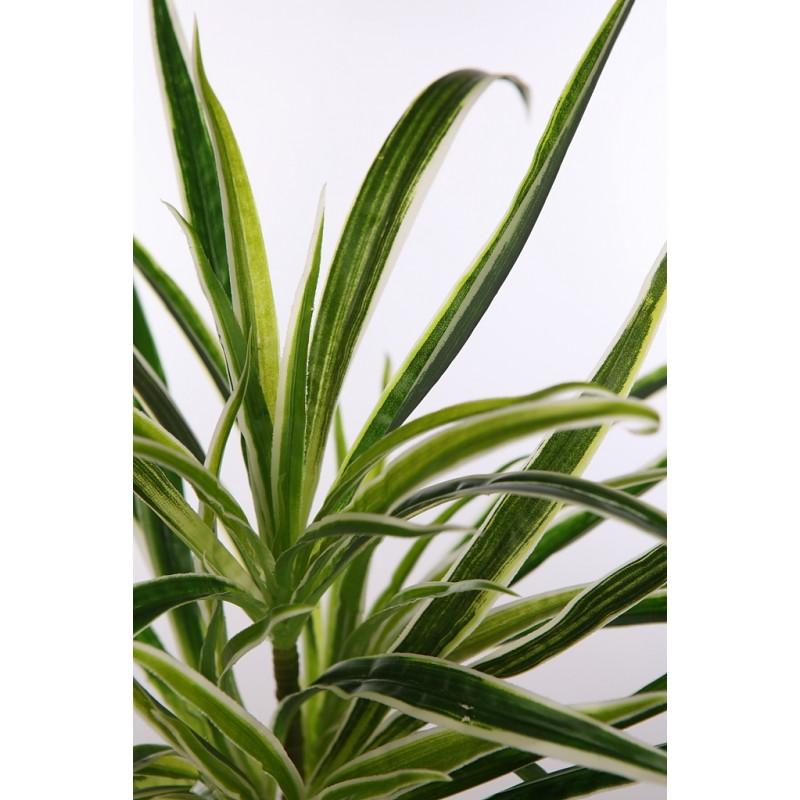 Planta cinta clorofito artificial - Cinta planta ...