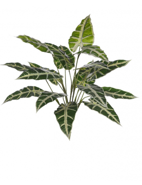 PLANTA ALOCASIA SANDERIANA ARTIFICIAL