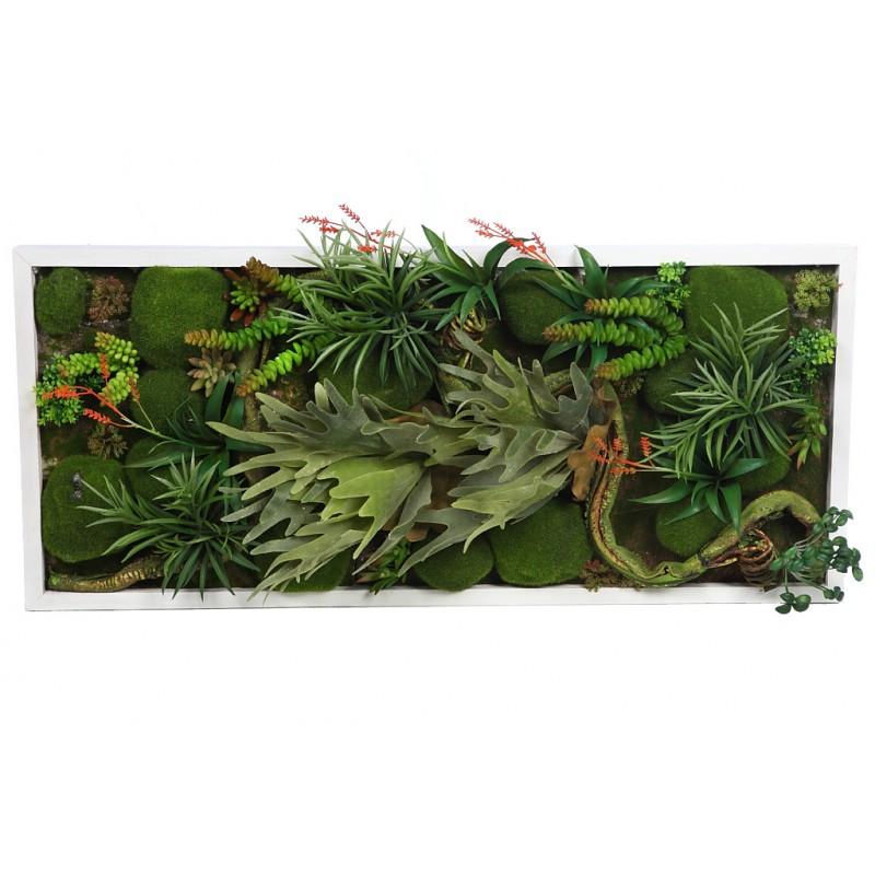 Cuadro vegetal 80x35cm - Cuadro jardin vertical ...