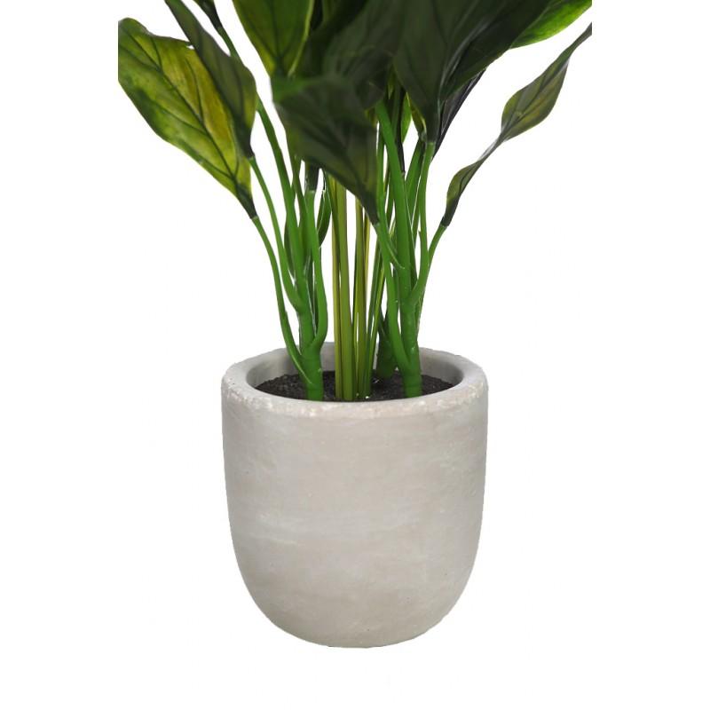 Spatifilium artificial en maceta de cemento 50 cm - Maceta de cemento ...