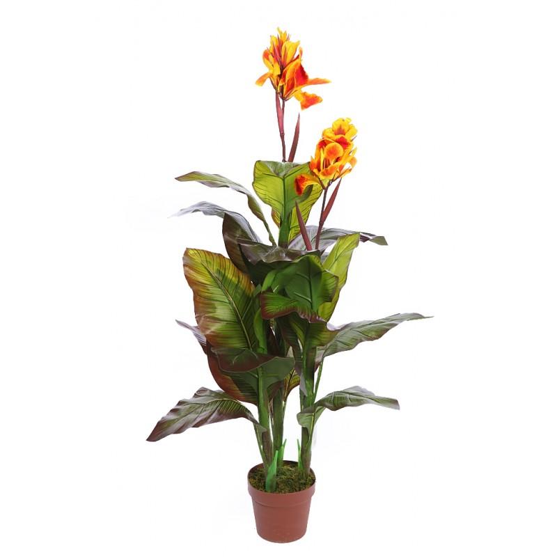 Planta cana artificial en maceta 120cm ancho 80cm - Hierba luisa en maceta ...