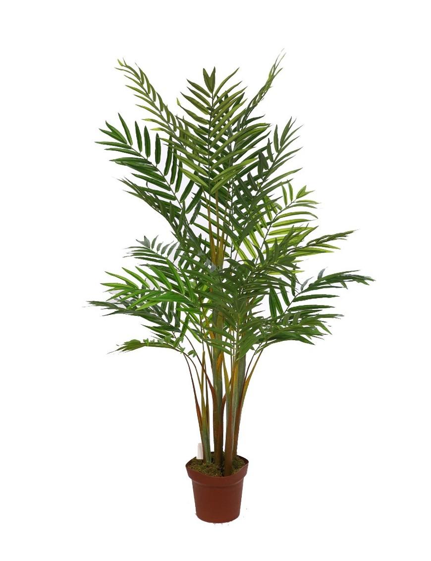 Palmera bambu 155 cm - Planta interior palmera ...