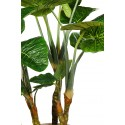 PLANTA COLOCASIA TARO ARTIFICIAL 235CM