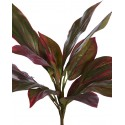 CORDYLINE TACTO NATURAL 45CM