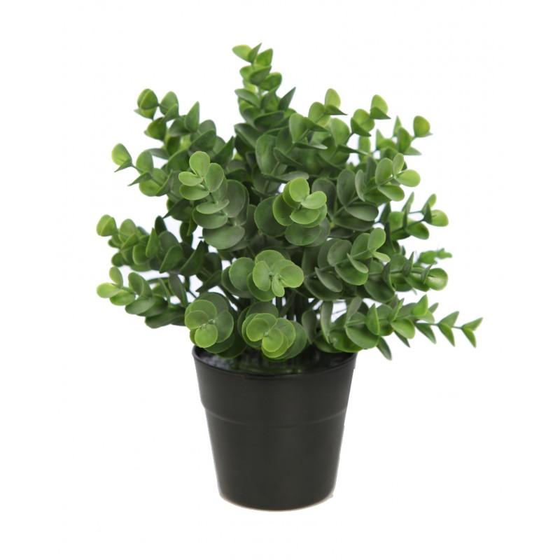 Maceta eucalipto artificial 25 cm - Verdecora macetas ...