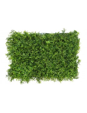 PLACA VEGETAL BROTES GERMINADOS 60CMX40CM