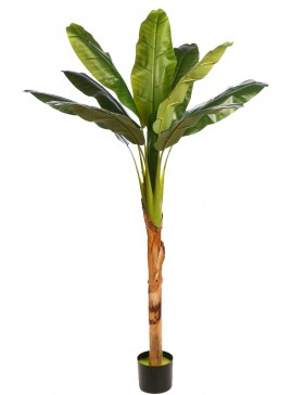 PLATANERA TROPIC ARTIFICIAL 150CM