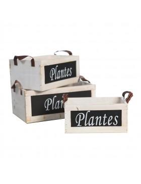 SET X3 DE CAJAS MADERA PLANTES