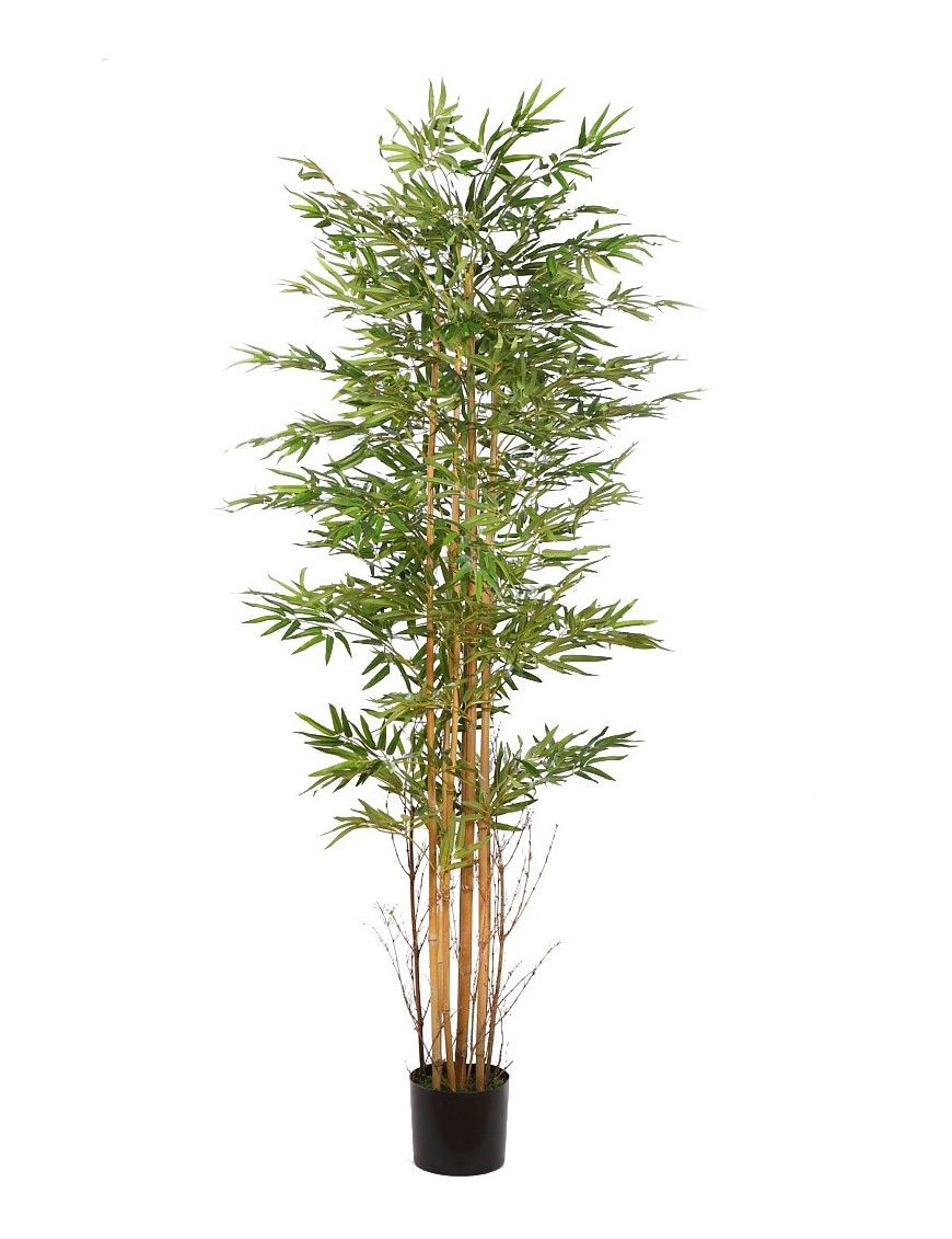 Arbol bambu artificial en maceta 190cm - Bambu cuidados en maceta ...
