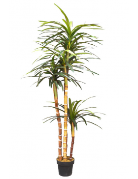DRACENA ARTIFICIAL MARGINATA 183CM
