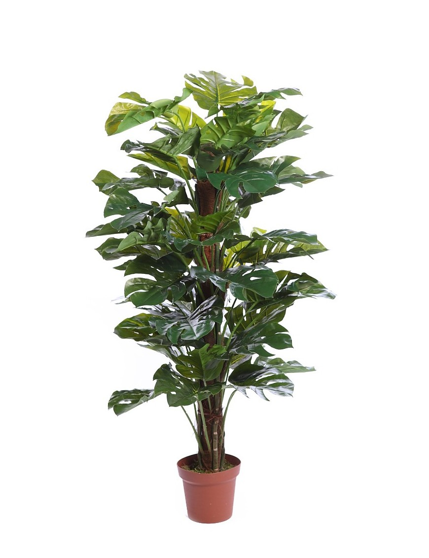 Planta monstera artificial en maceta 150cm for Plantas de exterior en maceta