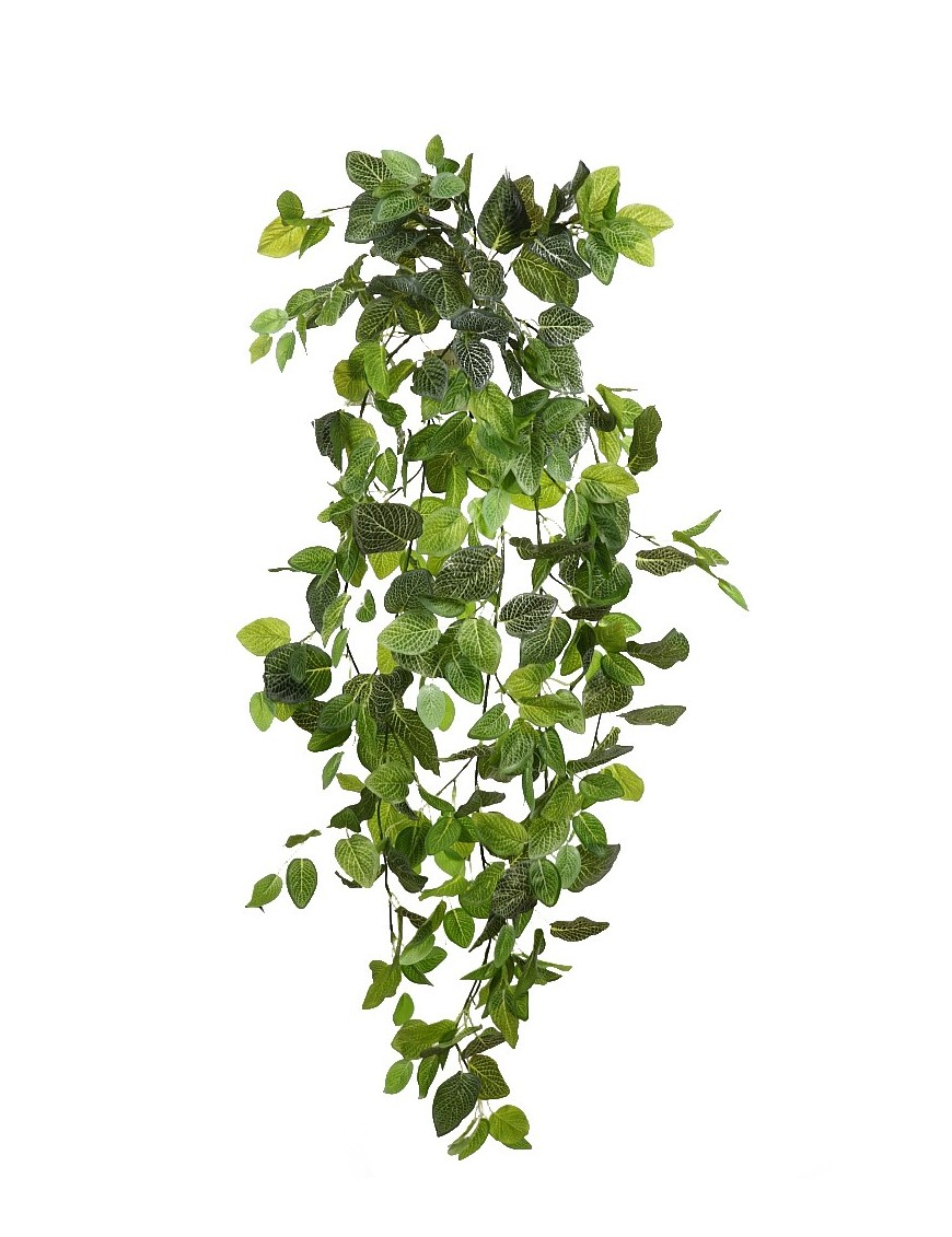 FITONIA COLGANTE ARTIFICIAL 130CM
