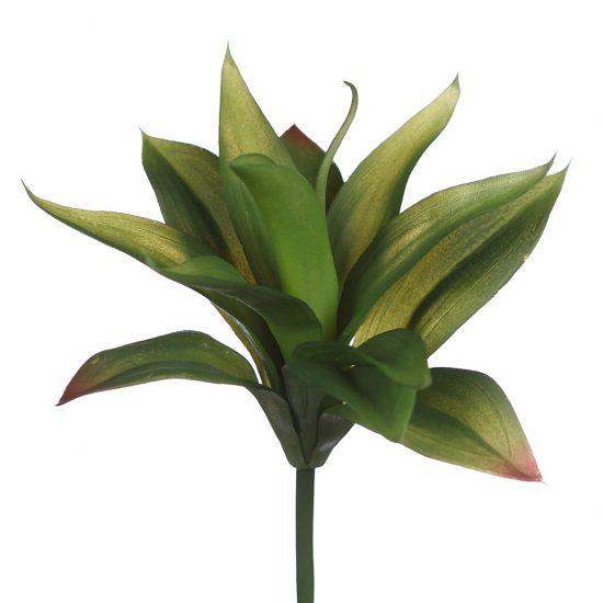 Plantas crasas artificiales