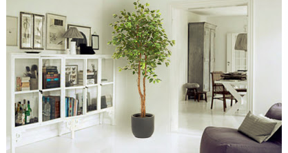 Algunas ideas para decorar con plantas artificiales