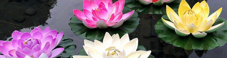 Flores flotantes y faroles para decorar piscinas