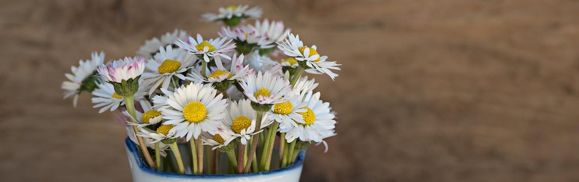 Cómo crear arreglos florales modernos