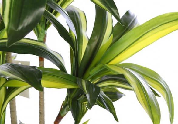Plantas artificiales para la oficina