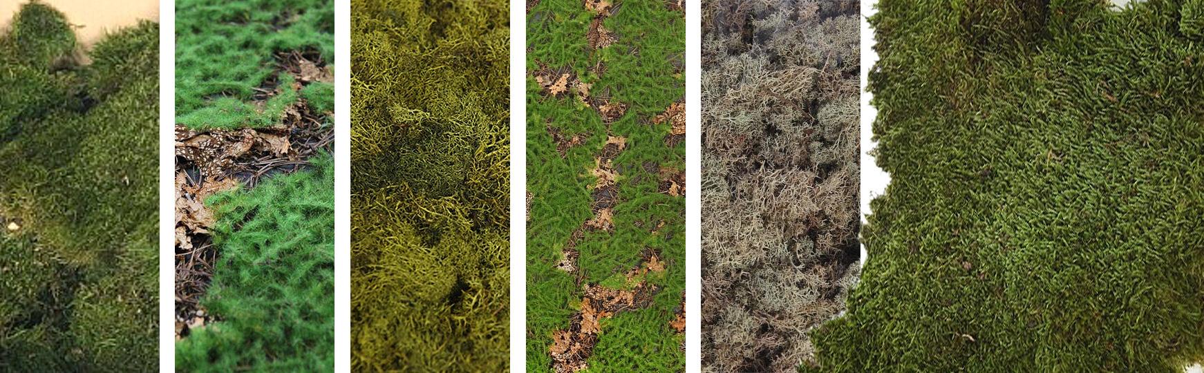 plantas-artificiales-musgo.jpg